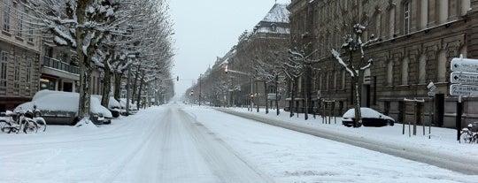 Avenue des Vosges is one of Strasbourg - Capitale de Noël - #4sqcities.