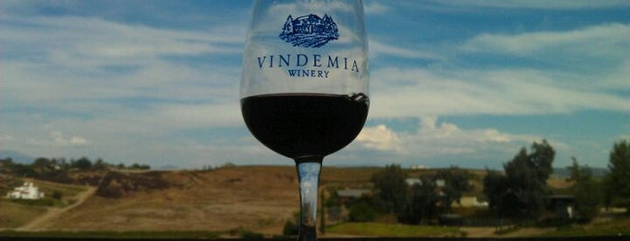 Vindemia Vineyard is one of Temecula Wineries.