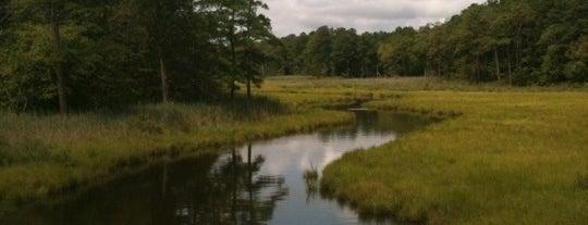 Junction & Breakwater Trail is one of Delaware chillin.