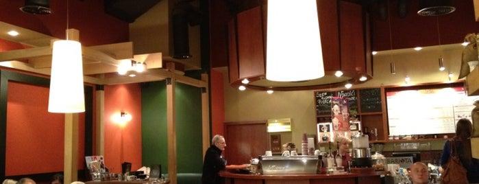 The Barista Espresso Bar & Bakery is one of Free hotspot WiFi Warszawa.