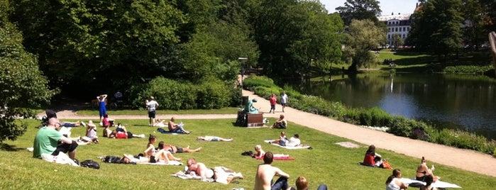 Ørstedsparken is one of Copenhagen.