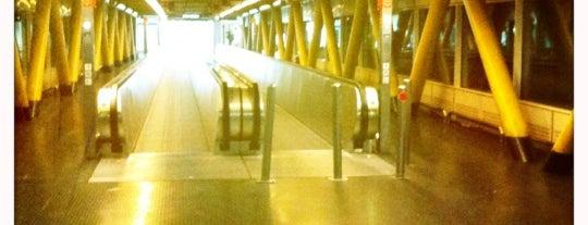 Leonardo da Vinci–Fiumicino Airport (FCO) is one of I Love Airports!.