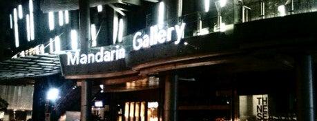 Mandarin Gallery is one of 新加坡 Singapore - Shopping Malls.