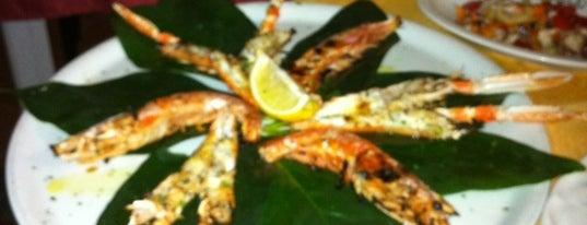 Il mio Capriccio is one of 20 favorite restaurants.
