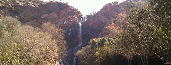 Walter Sisulu National Botanical Gardens is one of World Sites.