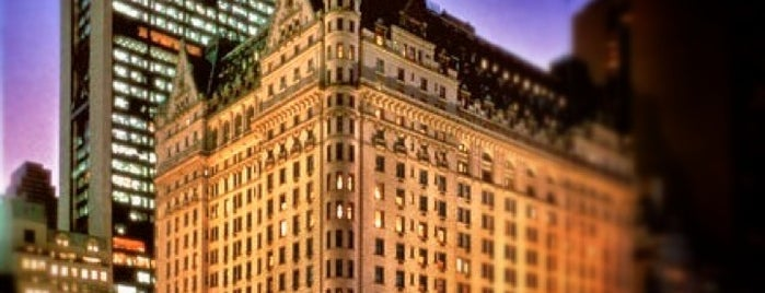 The Plaza Hotel is one of New York.