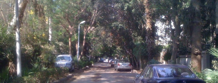 Maadi is one of Cairo's Best Spots & Must Do's!.