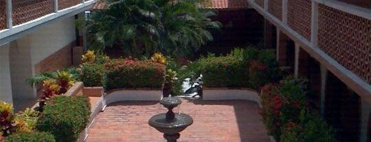 Hotel Rosita is one of Puerto Vallarta Hotels.