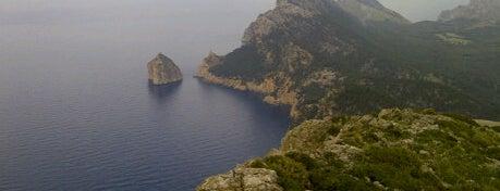 Talaia d'Albercutx is one of Mallorca Birdwatching/Ornithology.
