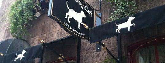 White Dog Cafe is one of Alyssa's University City.