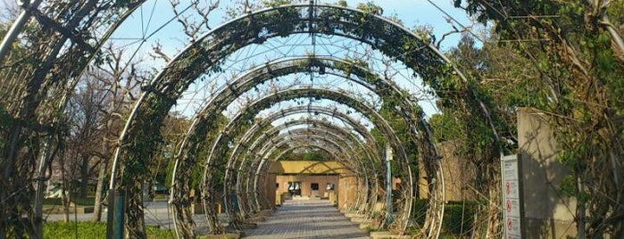 Yamashita Park is one of Bucket List Places.