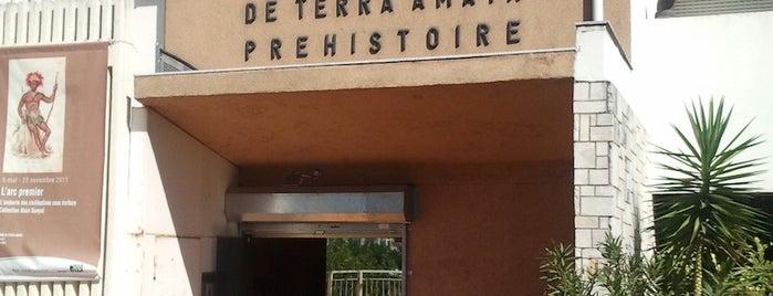Musée de Paléontologie Humaine de Terra Amata is one of Curious cabinets.