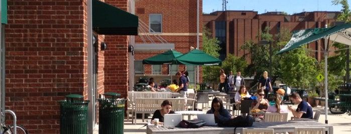Starbucks is one of GMU Fairfax Campus.