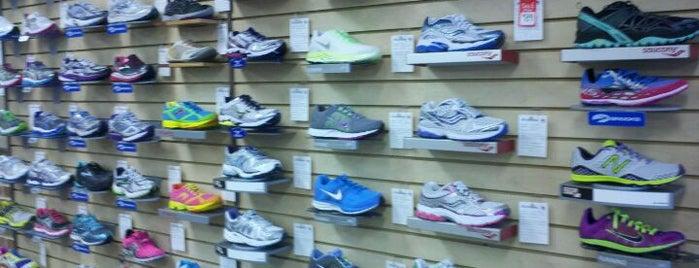 Aardvark Sports Shop is one of Phila Lemon Run.
