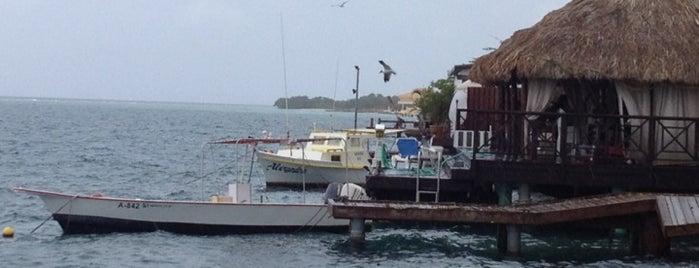 Zeerover is one of Aruba.