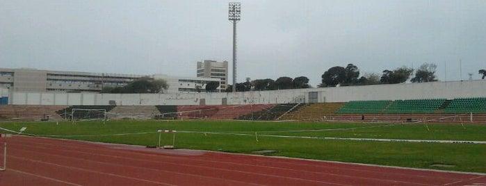 Estadio Elías Figueroa Brander is one of Estadios.