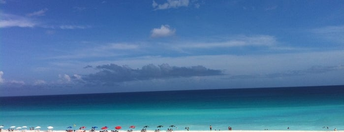 Playa Delfines (El Mirador) is one of Cancun.