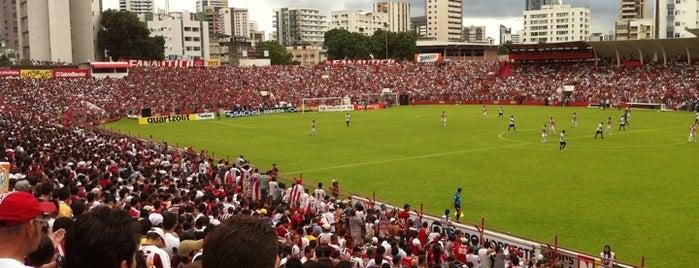 Estádio Eládio de Barros Carvalho is one of Meus Lugares.
