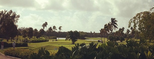 Crandon Golf at Key Biscayne is one of Golf Miami-Dade.