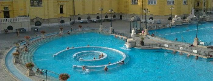 Széchenyi Thermal Bath is one of Budapesti egészséges helyek.