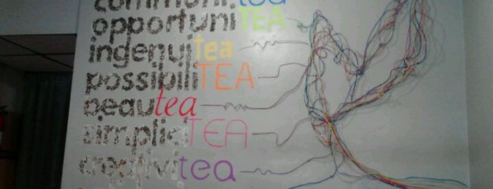 Kaleisia Tea Lounge is one of Things to do in Tampa Bay.
