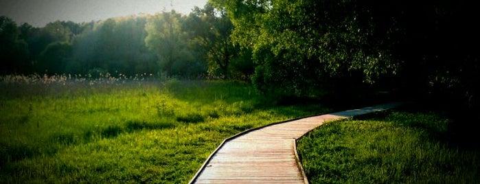 Экологическая тропа is one of Parks & Outdoor.