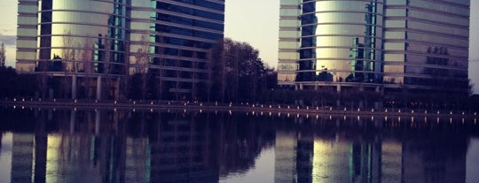 Oracle Plaza is one of Startups World.