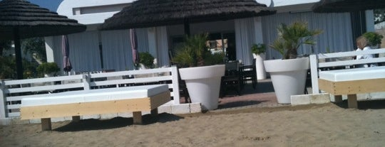 Bagno Adriatico 62 is one of Beach.