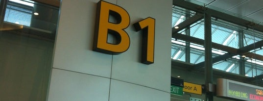 Gate B1 is one of SIN Airport Gates.