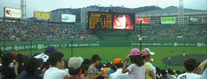 Sajik Baseball Stadium is one of Swarming Places in S.Korea.