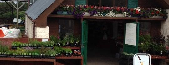 Wester Hardmuir Fruit Farm is one of GreaterSpeyside.