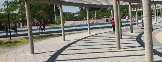 Parque San Jacinto is one of Reto 100 ZMG.