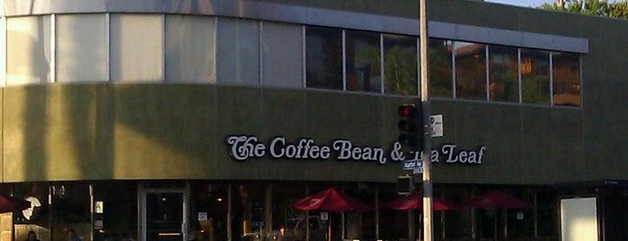 The Coffee Bean & Tea Leaf is one of Favorite Coffee Shops.