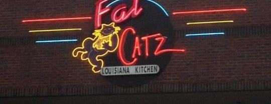 Fat Catz Louisiana Kitchen is one of Food.