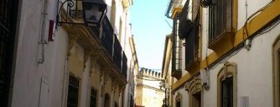 Hotel Los Omeyas is one of Donde comer y dormir en cordoba.