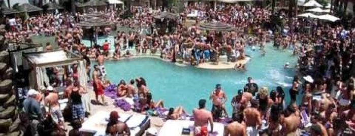Best Vegas Pool Parties