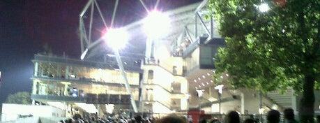 BayArena is one of Best Stadiums.
