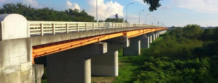 新大利根橋 is one of サイクリング.