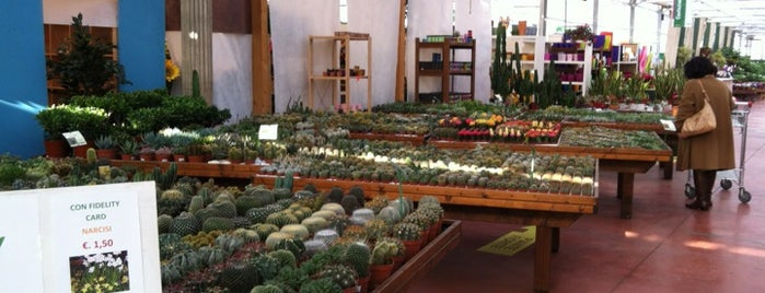 Bovo Garden - Floricoltura is one of LOCAL.
