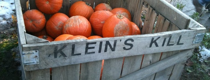 Queens County Farm Museum is one of Least Known but Most Rewarding Places in NYC.