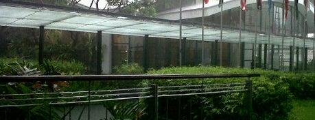 World Health Organization is one of Manila.