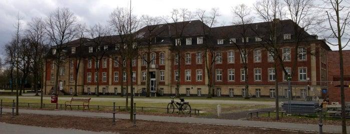 Schlossplatz is one of Münster - must visit.