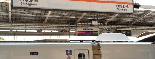 Shin-Yokohama Station is one of 東京近郊区間主要駅.