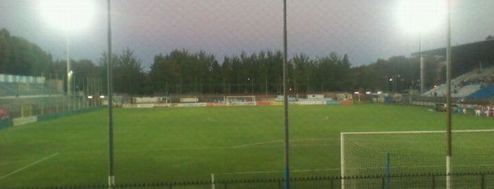 Stadio Paolo Mazza is one of Sport per Tutti.