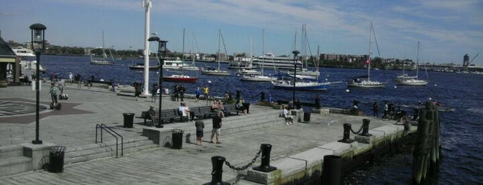 Boston Harbor Whale Watch is one of Best Boston Attractions Where You Can Save 7%!.