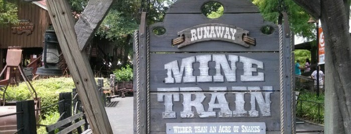 The Runaway Mine Train is one of ROLLER COASTERS.
