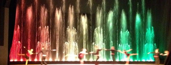 Цирк танцующих фонтанов «Аквамарин» is one of Сохраненные.