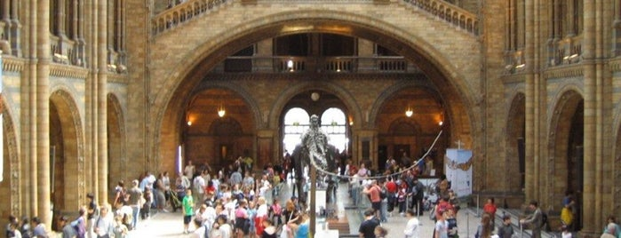 Natural History Museum is one of London as a local.
