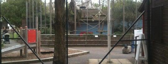 Battersea Park Children's Zoo is one of London.