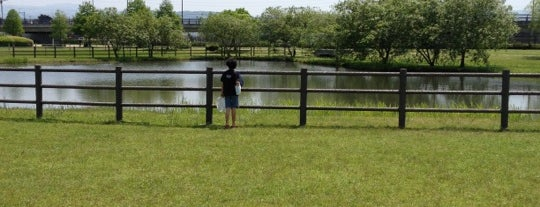 水前寺江津湖公園 is one of 日本の都市公園100選.